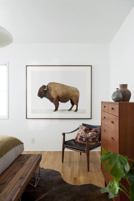 american-buffalo